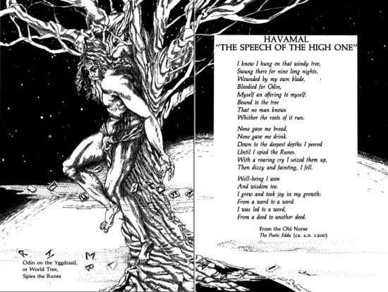 havamal-the-speech-of-the-high-one.png
